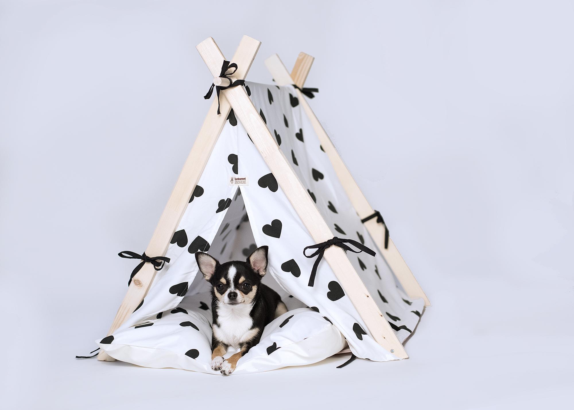triangulartent-01-02.jpg