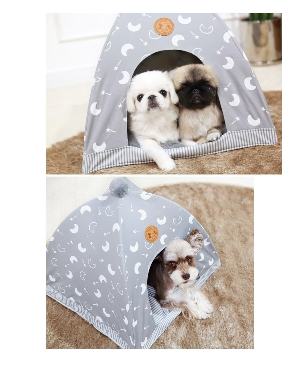 pop-tent-08.jpg